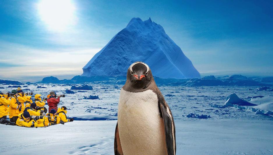 Campagnebeeld Antarctica met De Jongens - Vis à Vis